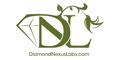 diamondnexuslabs.com